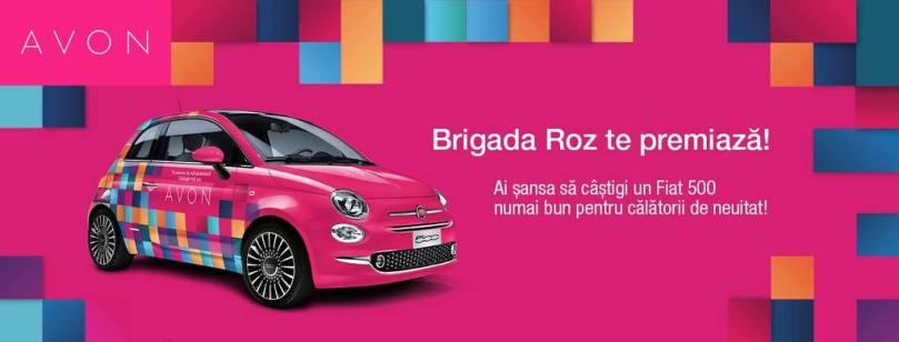 Brigada-Roz-1024x390-1